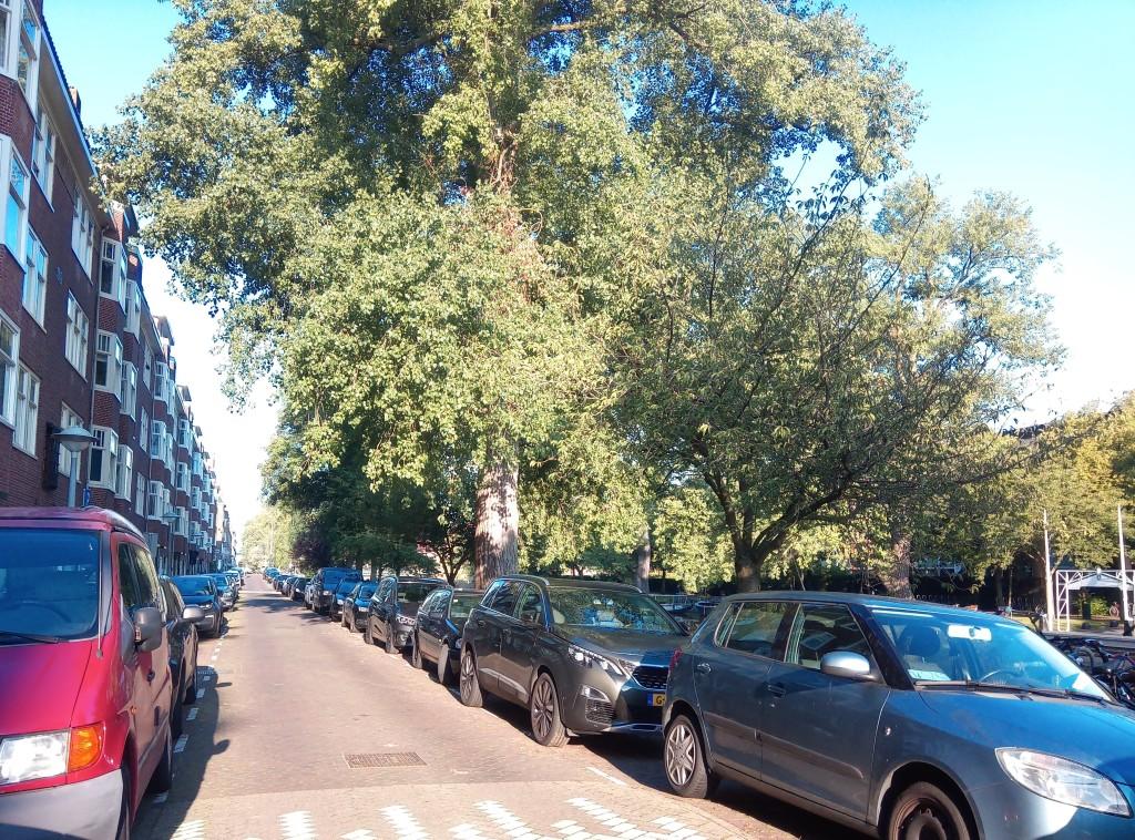 Паркирани автомобили в Амстердам
