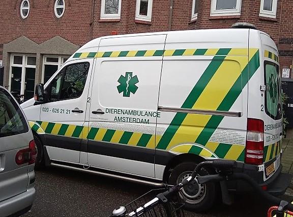 020 – 626 21 21 е номерът на амстердамските животински линейки.